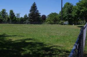Fenced field at Northfield Dog Training, Ann Arbor MI