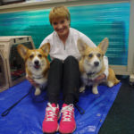 Marilyn Roth-Basinger with two Corgi's