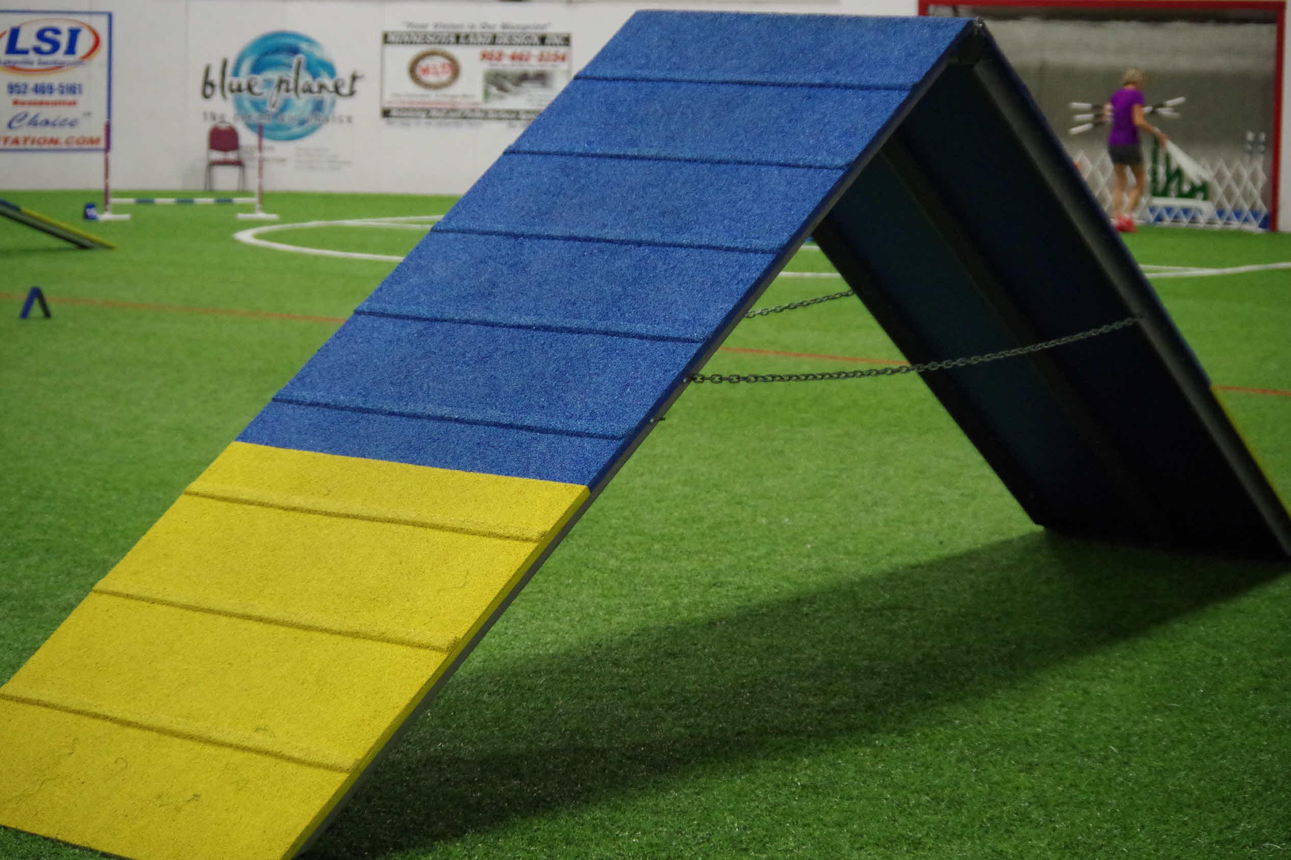 Agility Ring | Soccer Blast | Burnsville MN - Dog Agility Trials