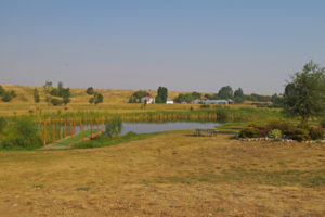 Pond with dock for dock diving at Yellowstone Dog Sports, Roberts, Montana