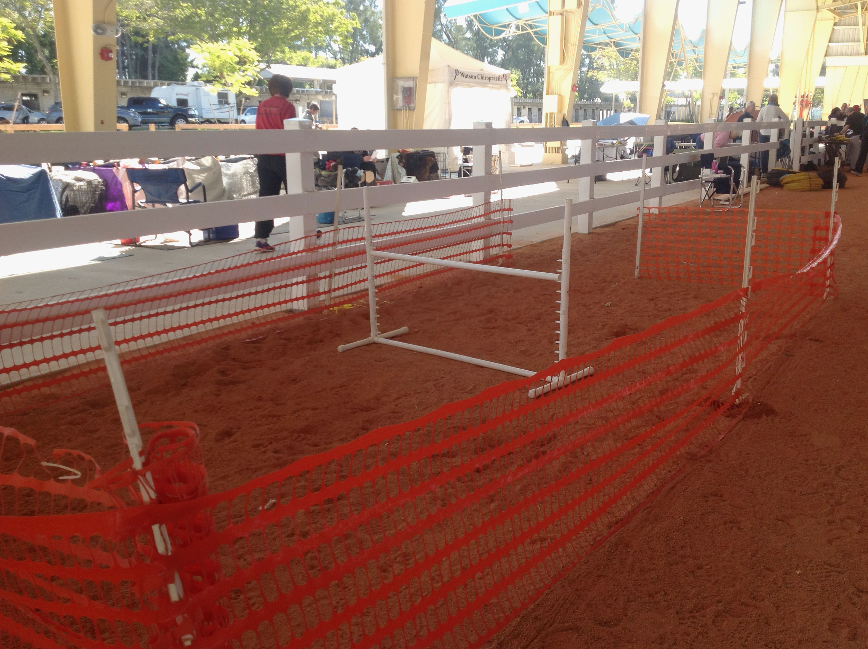 Agility Rings Tropical Park Miami Fl Dog Agility Trials